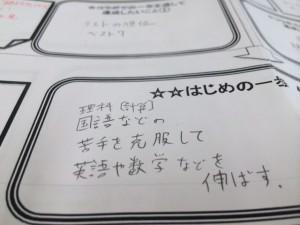 photo 1 (8)