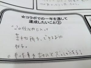 photo 2 (6)