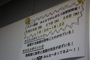 3-IMG_9572